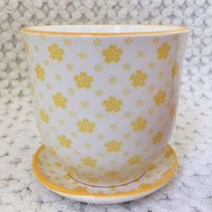 Chive Liberte Pot & Saucer in Yellow Flowers